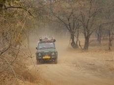 Jeep Ranthambore